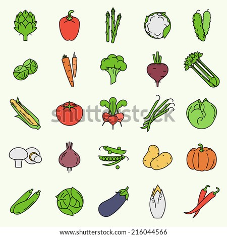 Vector modern flat design vegetables and green salads colored line icons | Collection of contour vegetable clip art featuring endive, beetroot, brussels sprouts, zucchini, iceberg lettuce, and more - stock vector