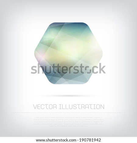 Vector modern hexagonal web banner / badge with colorful polygonal texture