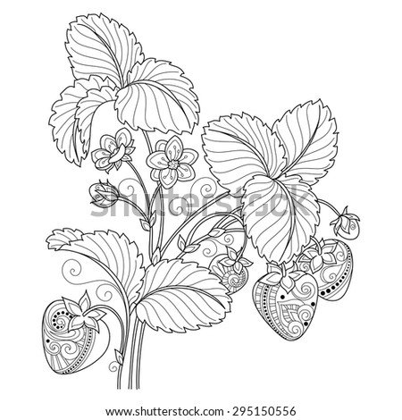 Vector Monochrome Fruit Background. Hand Drawn Decorative Strawberry - stock vector
