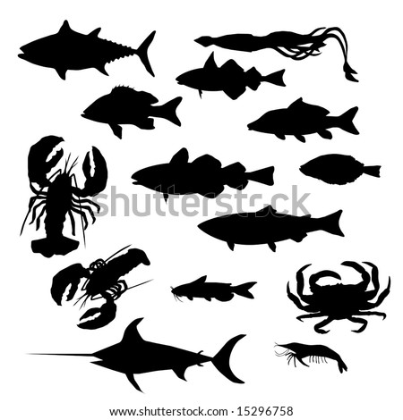 Vector most popular seafood collection.