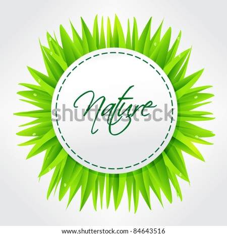 Vector natural bio frame paper tag with grass in the background - stock vector