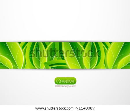 Vector nature leaves eps 10 background - stock vector