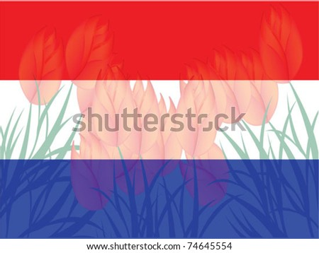 vector netherlands flag - stock vector