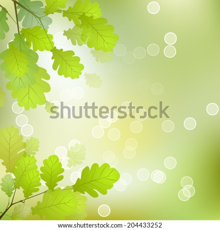 Vector Oak Leaves on the Branches in front of a Blurred Background - stock vector