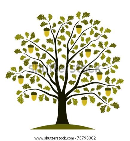 vector oak tree on white background - stock vector