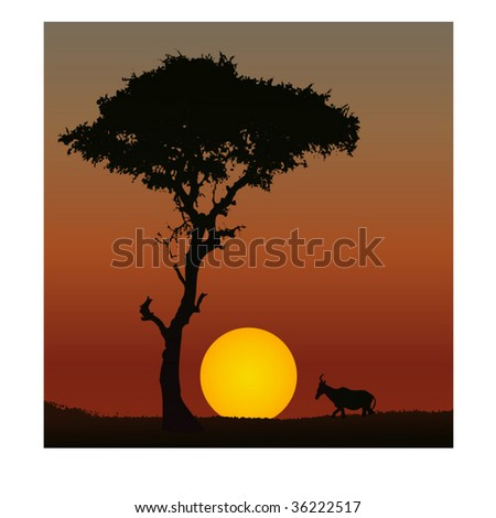 Vector of a scene of sunset in Africa - stock vector