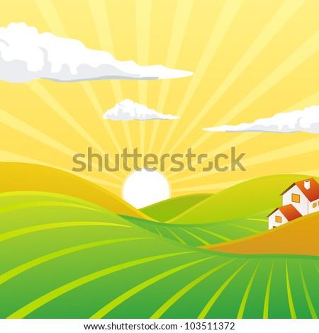 Vector of a summer evening landscape - stock vector
