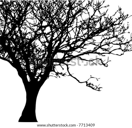 Vector of a tree silhouette - stock vector