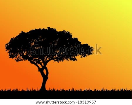 Vector of a typical African tree in silhouette. For the jpg-version, see my portfolio please (click on my name).