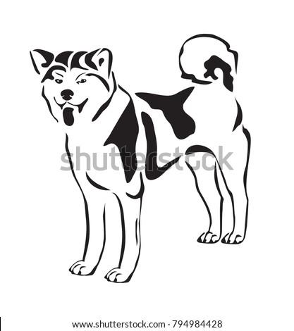 Vector Akita Inu Dog Design On Stock Vector 794984428 - Shutterstock