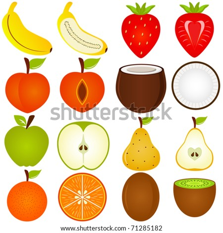 Stock Vector Vector Of Fruit Representing Alphabet A To Z Dictionary For Kids Apple Banana Cherry Dragon Elderberry Fig Grape Honeydew Etc Set Of Cute Colorful Icon Collection Isolated On on Vector Fruit Representing Alphabet Z Dictionary 128047013