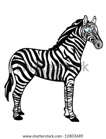 vector of zebra with blue eyes