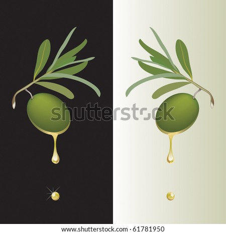 vector olive on branch with oil drop - stock vector