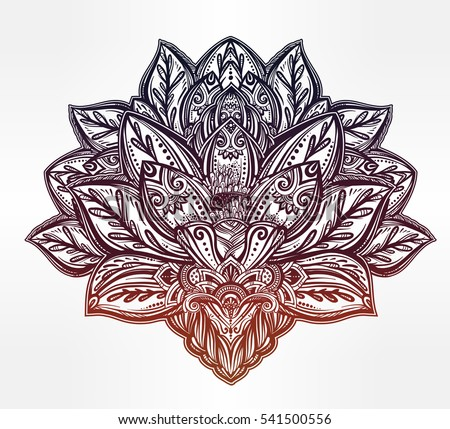 Indian lotus flower pictures savingourboysfo indian lotus stock images royaltyfree images vectors beautiful flower mightylinksfo