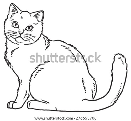 Vector outline sketch if a cat sitting and looking curious