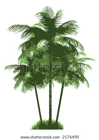 vector palm trees - stock vector
