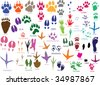 Vector paw prints of animals and birds - stock vector