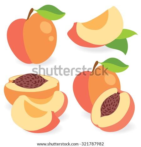 Vector peaches. Cut peach fruits, collection of vector illustration - stock vector