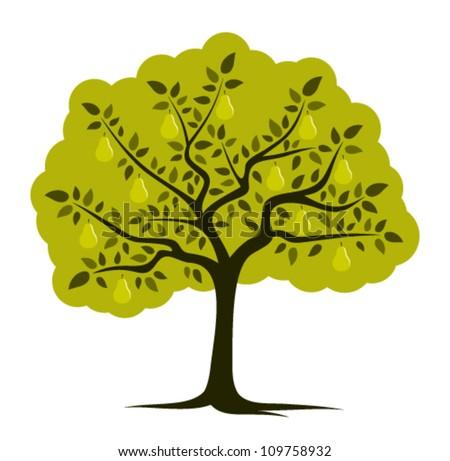 Pear Tree Cartoon Vector Pear Tree Isolated on