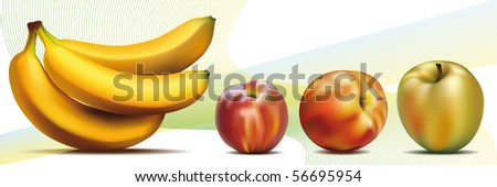 Vector photo-realistic fresh fruits - stock vector