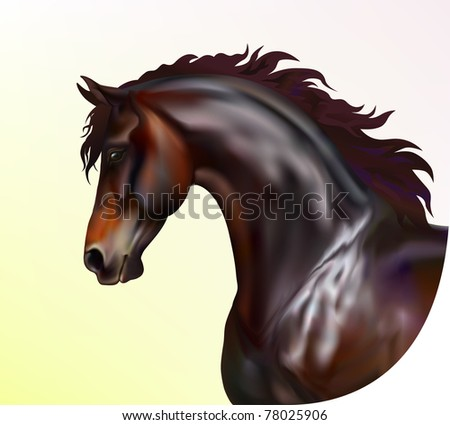 Vector photo realistic horse portrait - stock vector