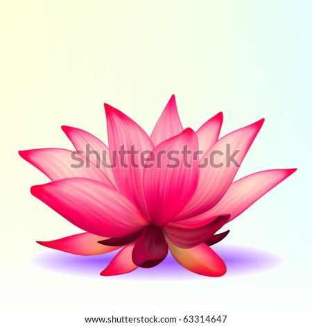 Vector photo-realistic lotus flower - stock vector