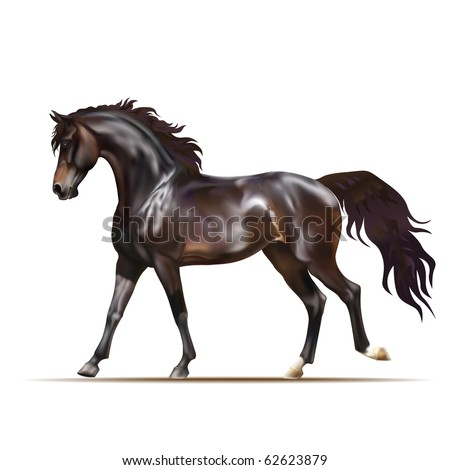 Vector photo realistic running dark bay horse - stock vector