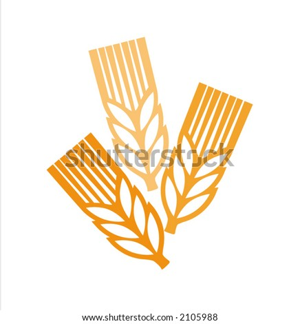 vector picture of a ears at white background - stock vector