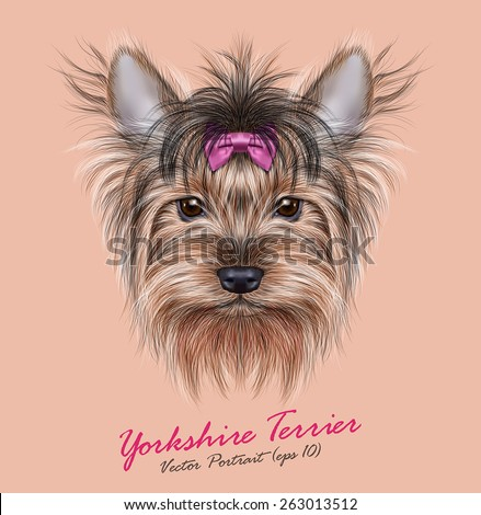 Vector Portrait of a Domestic Dog. Cute head of Yorkshire Terrier on ping background. - stock vector