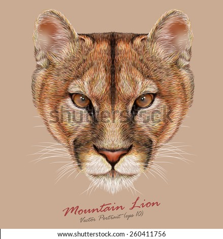 Vector Portrait of a Mountain Lion. Cuguar Cat. - stock vector