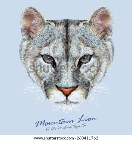 Vector Portrait of a Mountain Lion on Blue background. Cuguar Cat. - stock vector
