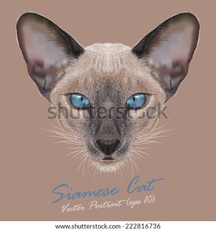 Vector Portrait of a Siamese cat. Cute Siamese kitten. Blue point. - stock vector