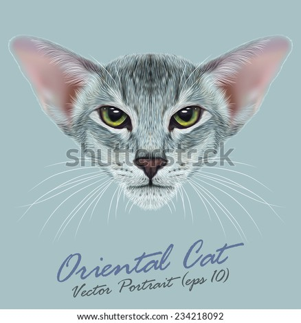 Vector Portrait of Oriental Cat. Very beautiful domestic cat tabby coat print with green eyes. - stock vector