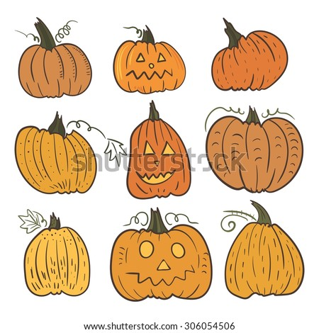 Vector Pumpkin Set | Fall sketch illustrations for halloween, thanksgiving design - stock vector