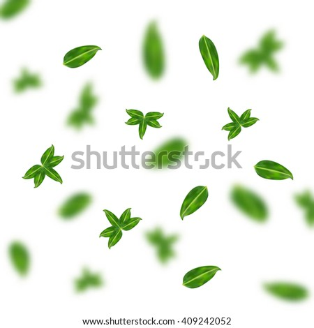 Vector realistic green leaves in different shapes and forms flying in the air. Green vector leaves background. Blurred and sharp vector leaf concept. Fresh spring leaves floating. - stock vector