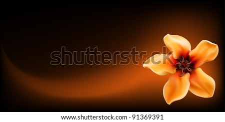 Vector realistic yellow tropical flower on dark abstract background - stock vector
