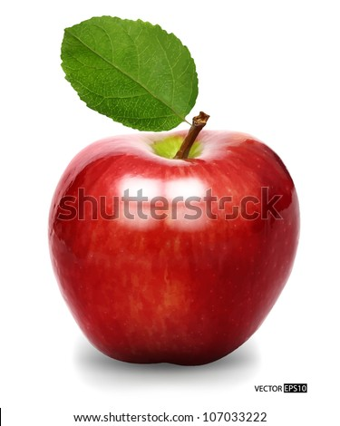 Vector red apple isolated - stock vector