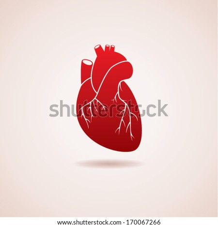 vector red human heart icon - stock vector