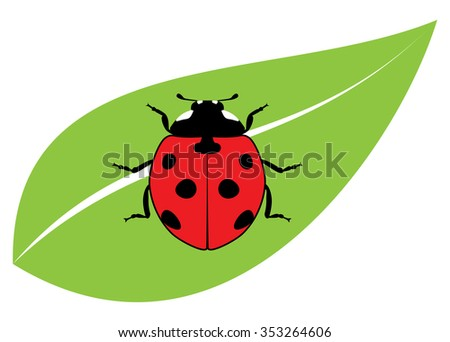 vector red ladybird on a green leaf - stock vector