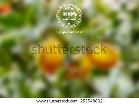 Vector retro label for natural organic food. Blurred effect background. - stock vector