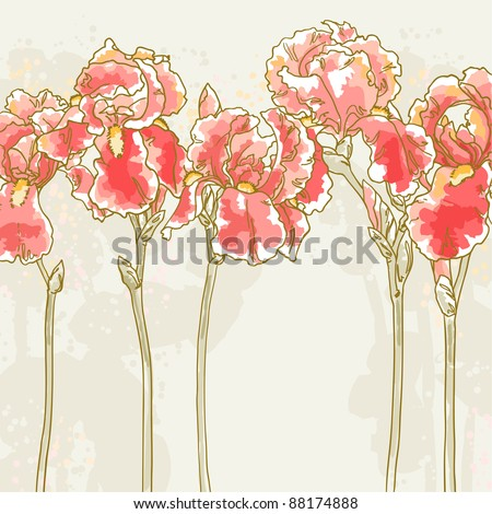 Vector romantic floral background with red iris