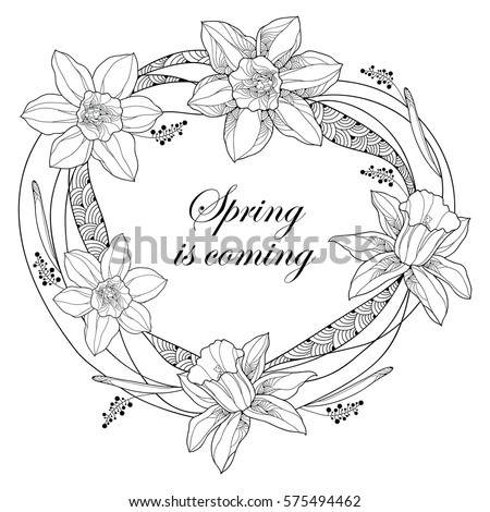 vector round frame with outline narcissus or daffodil flowers and ornate leaves isolated on white background