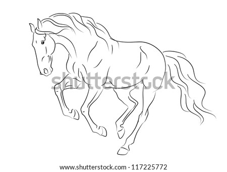 Vector running andalusian horse sketch - stock vector