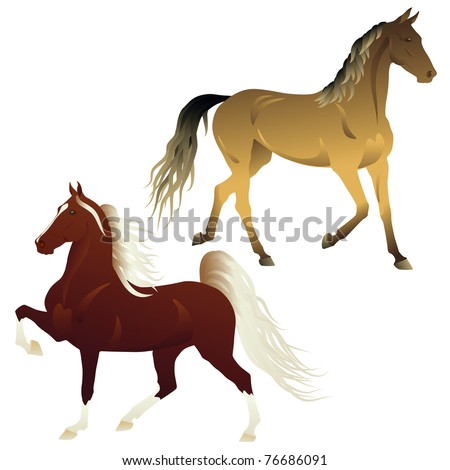 Vector running horses isolated on white background - stock vector