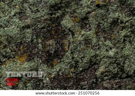 Vector rusted sheet of metal, metal texture, grunge background - stock vector