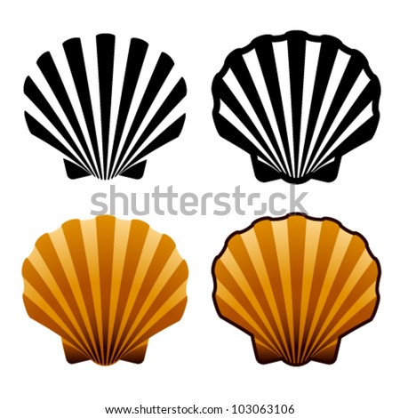 vector sea shells - stock vector