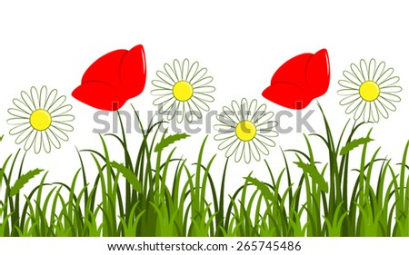 vector seamless border with daisies and corn poppy in grass isolated on white background - stock vector