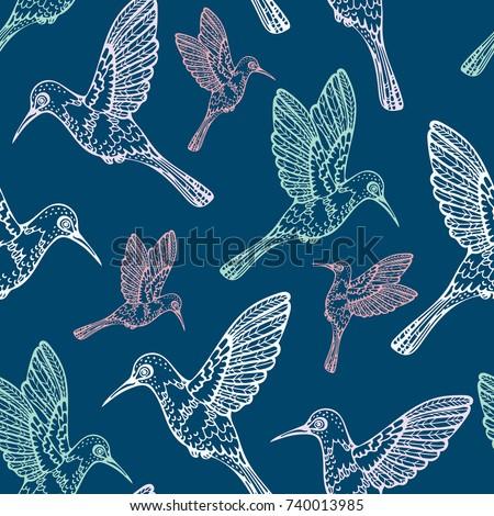 Vector Seamless Pattern With Hummingbird On A Blue Background Cartoon Wallpaper Birds