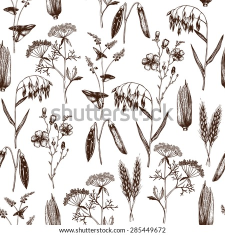 Vector seamless pattern with ink hand drawn agriculture plants sketch. Vintage farm plants illustration. Eco food background - stock vector