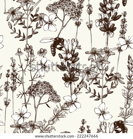 Vector seamless pattern with ink hand drawn herbs illustration in retro color. Vintage background with herbs flowers sketch  - stock vector